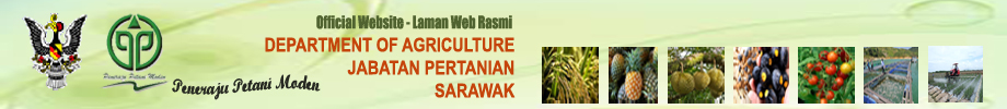 Welcome to Official Website of Department Of Agriculture Sarawak